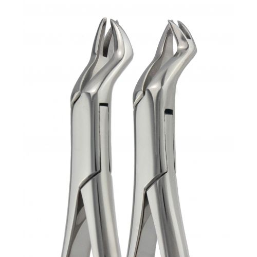 Extraction Forceps 88L & 88R