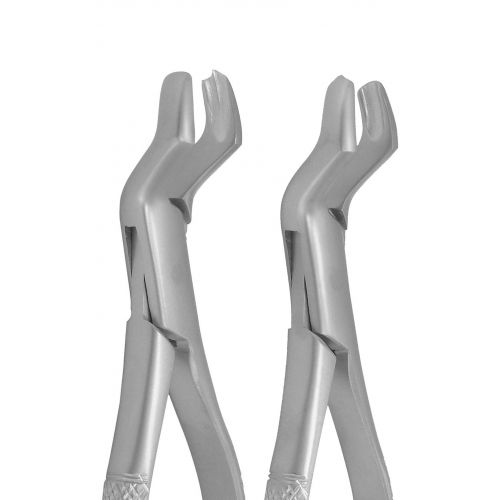 Extraction Forceps 53L & 53R