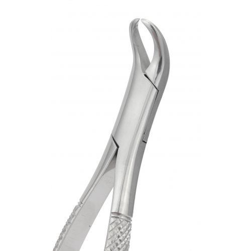 Extraction Forceps 023S