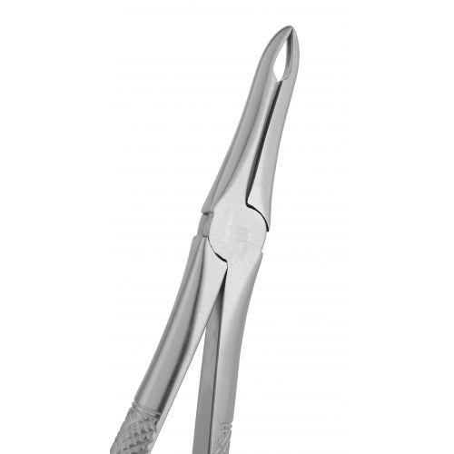 Extraction Forceps 041E